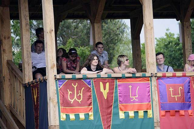 Публіка на виступі групи