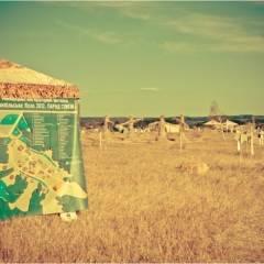 """Фестиваль """"Трипільське коло 2012. Парад стихій"""". Автор фото: Сергій Міненко"""